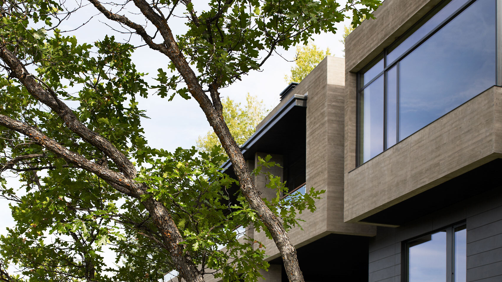 CCY Architects Red Mountain thumbnail scrub oak